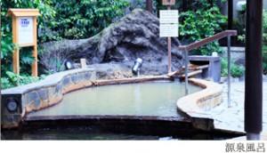 前野原温泉さやの湯処
